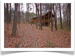 cabin in wooded area with fall leaves on ground